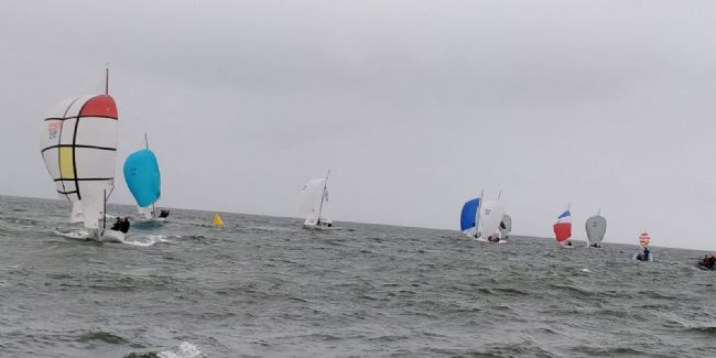NED 33 and the fabulous spinnaker